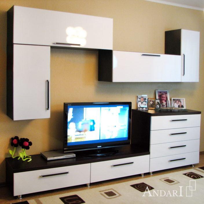 Набор корпусной мебели для гостиной Андари