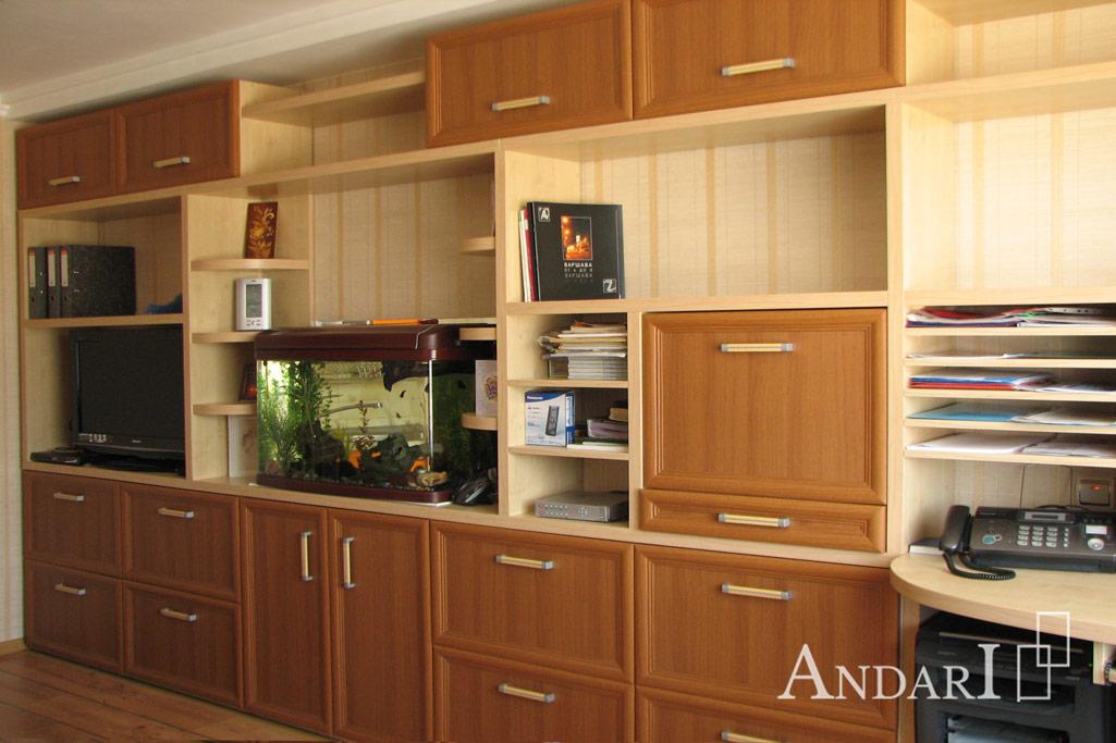 Встроенная мебель в гостиной - Андари