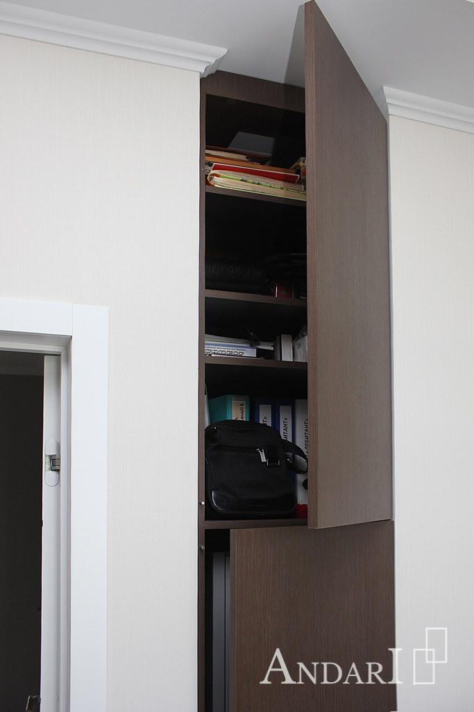 Встроенный шкаф в кабинете - Андари