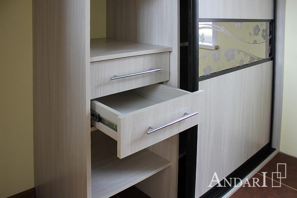 Наполнение шкафа-купе: выдвижные ящики - Андари