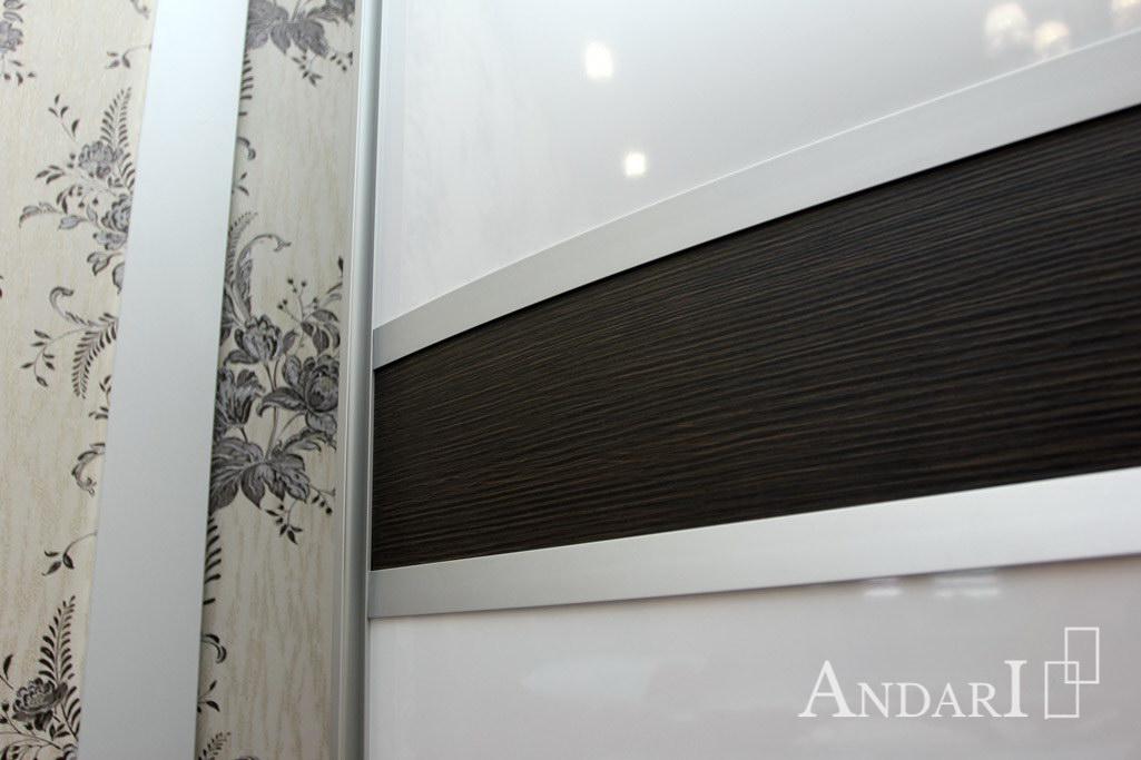 Радиусные двери-купе со вставками - Андари